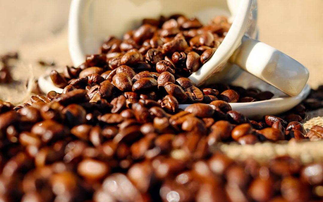 ¿Es malo masticar granos de café? ¿Cuales son los beneficios de masticar el grano de café?